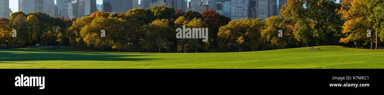 Central Park South from Sheep Meadow in early morning light. New York City Stock Photo