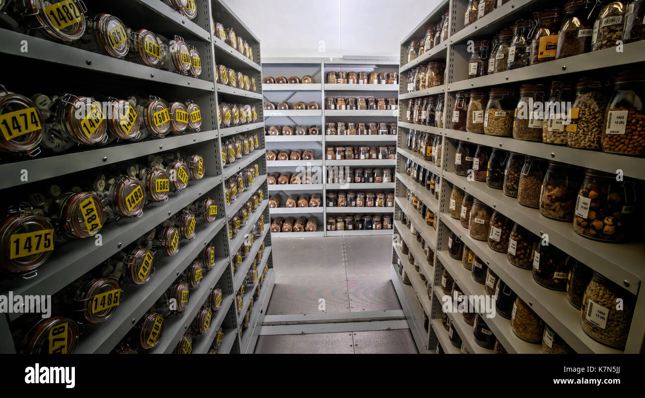 One of the storage vaults of the Millennium Seed Bank, where over a billion seeds are stored in the dark, at a releative humidity of -15% and at a sta Stock Photo