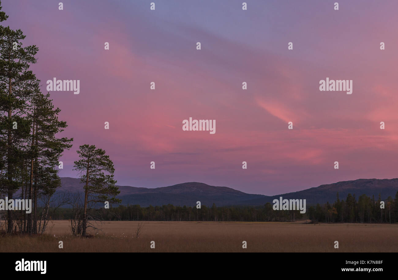 Pink sunset with view over field and mountains - Stock Image
