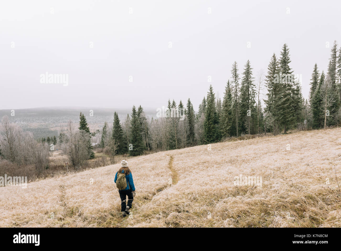 Young woman hiking on path through open field in frosty landscape - Stock Image