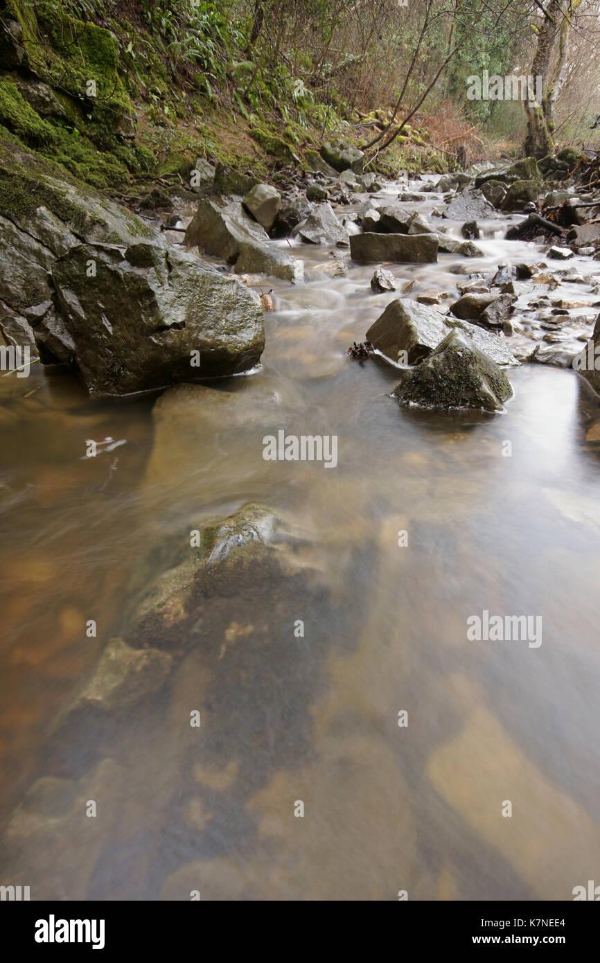 Bishopston valley - Stock Image