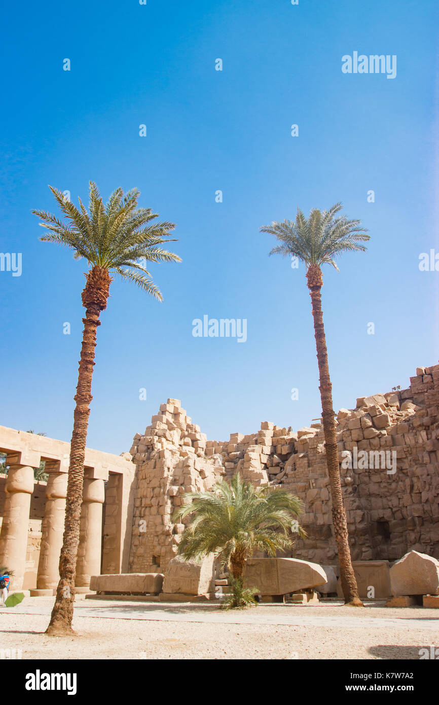 The temple in Luxor, Egypt - Stock Image