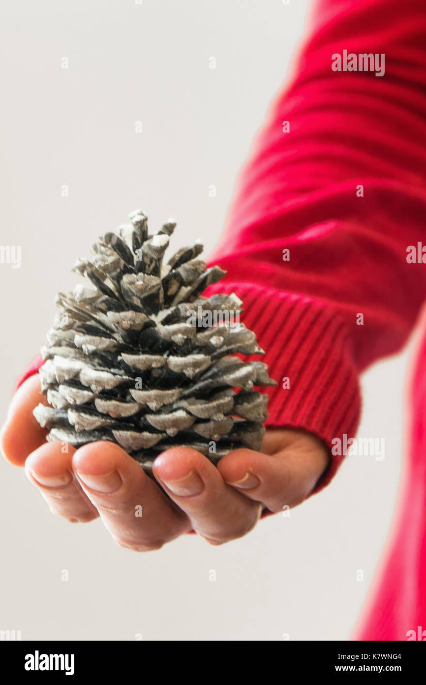 Woman holds pine cone - Stock Image