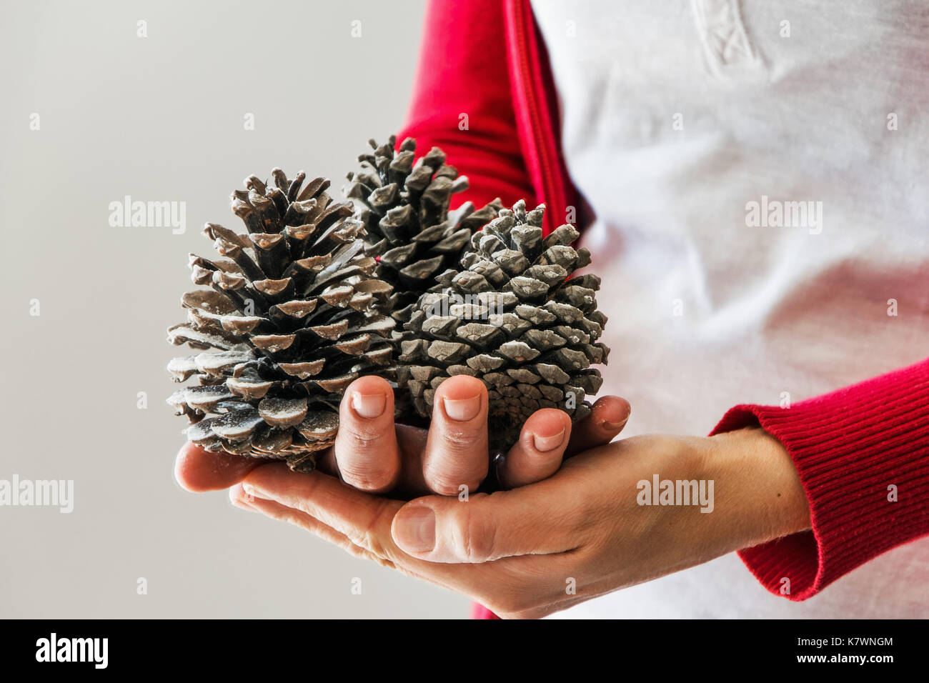 Woman holds pine cones - Stock Image