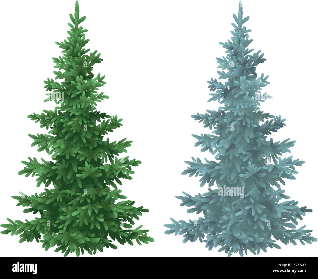 Christmas green and blue spruce fir trees - Stock Vector