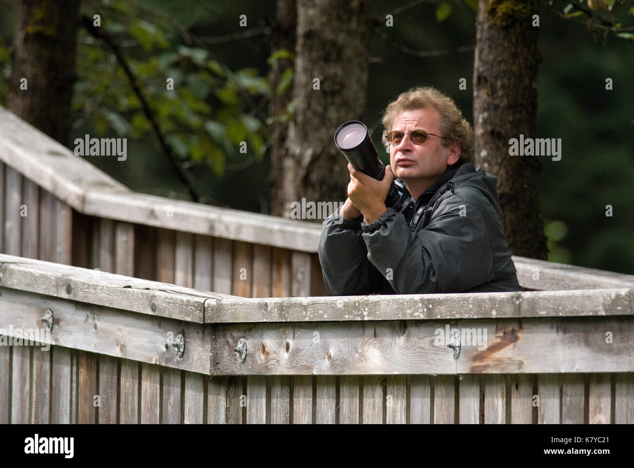 Photographer at Fish Creek Wildlife Observation Site, Tongass National Forest, Hyder, Alaska, USA - Stock Image
