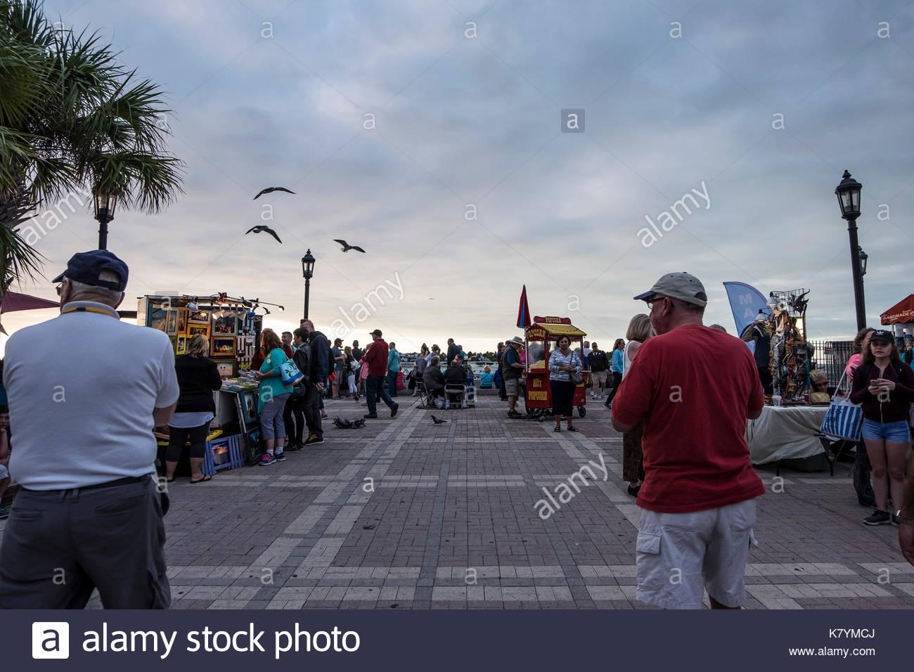 PICTURE OF FLORIDA KEYS - KEY WEST - KEY LARGO - BAHIA HONDA - KEY DEER - Stock Image