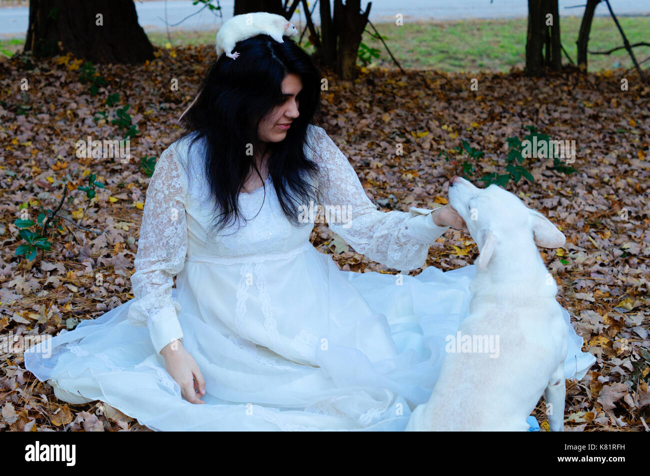 Teen girl sitting down petting a white dog while a white rat is on her head - Stock Image