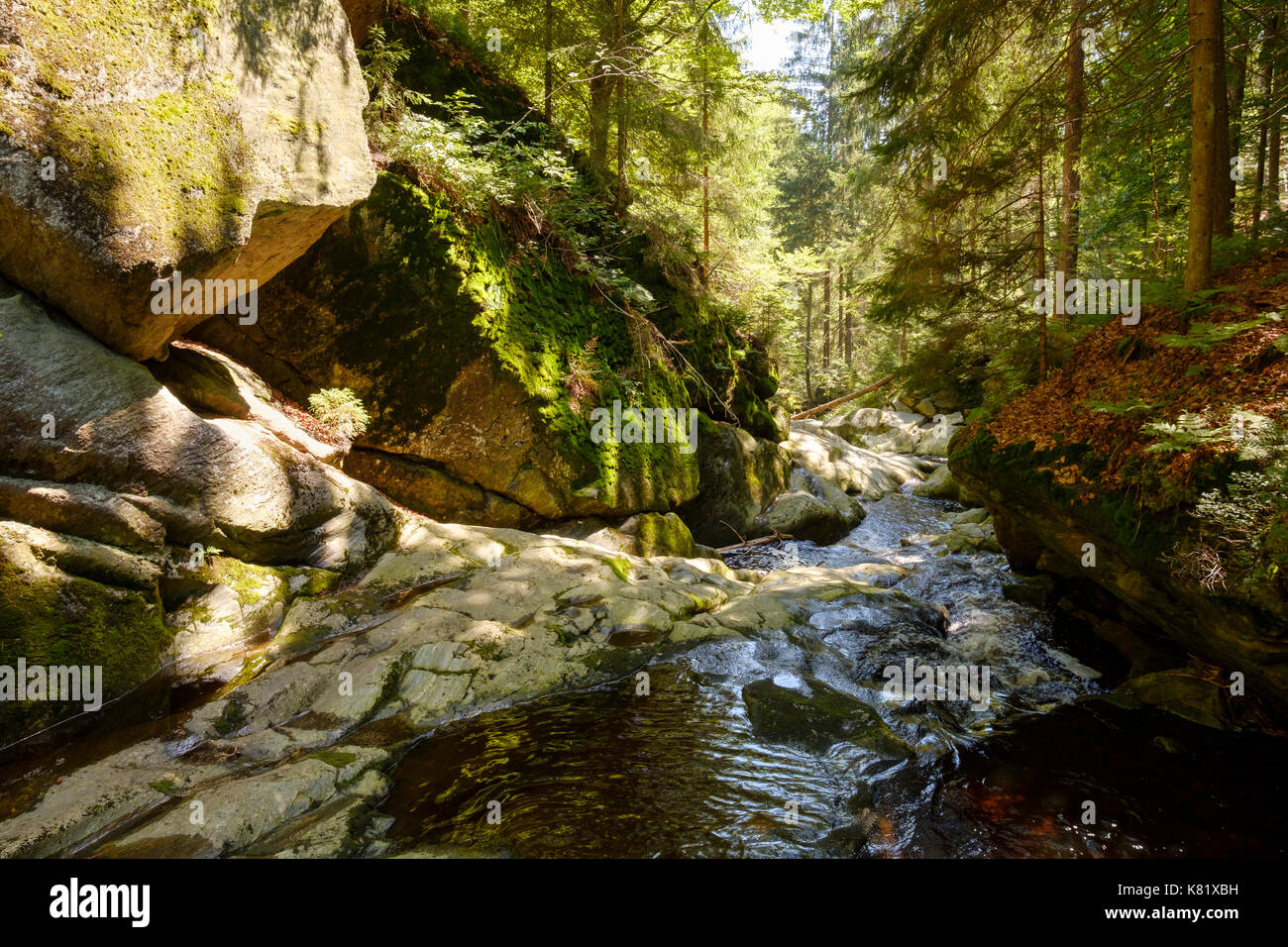 Steinklamm, Große Ohe, Spiegelau, Bavarian Forest, Lower Bavaria, Bavaria, Germany - Stock Image