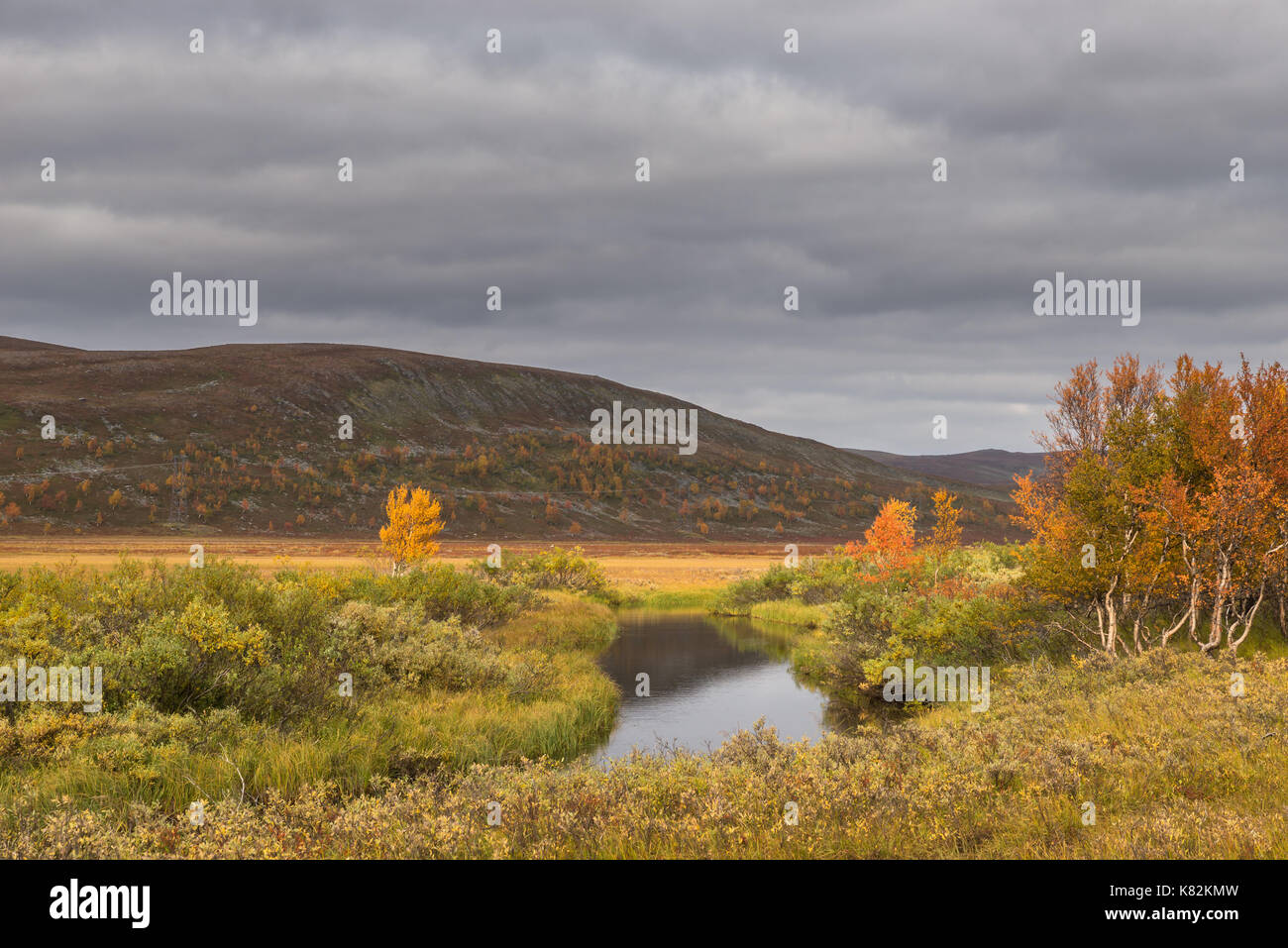 Autumn at the mountain in Finnmark, Norway with small river - Stock Image
