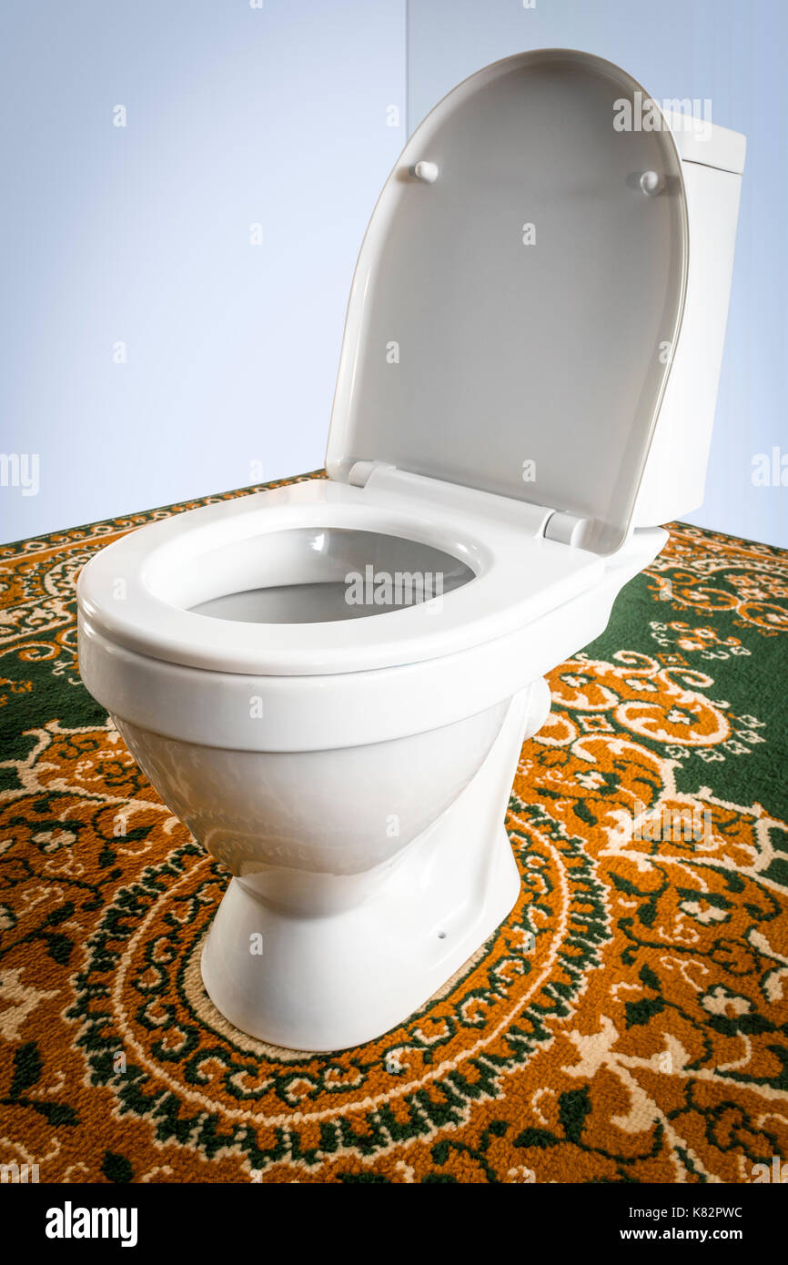 Fine White Toilet Bowl Close Up On The Carpet In The Center Of Gmtry Best Dining Table And Chair Ideas Images Gmtryco