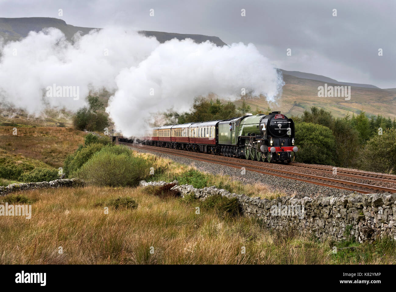 The Tornado locomotive hauls the 'Border Raider' steam special southward on the Settle- Carlisle railway line. Seen at the line's summit, Ais Gill. - Stock Image