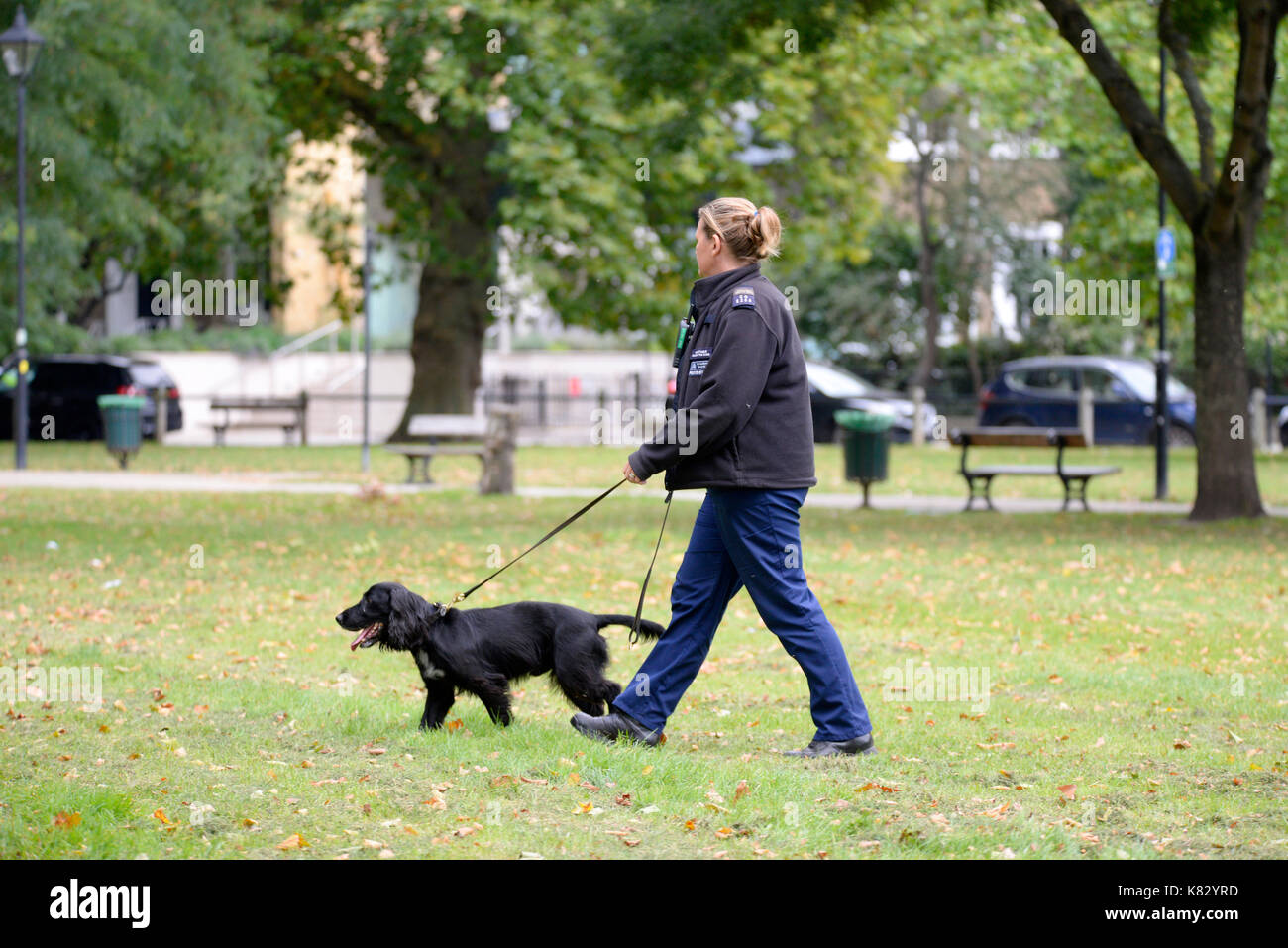 Parsons Green terrorist bomb, London. Police sniffer dog searching for further devices. Space for copy - Stock Image