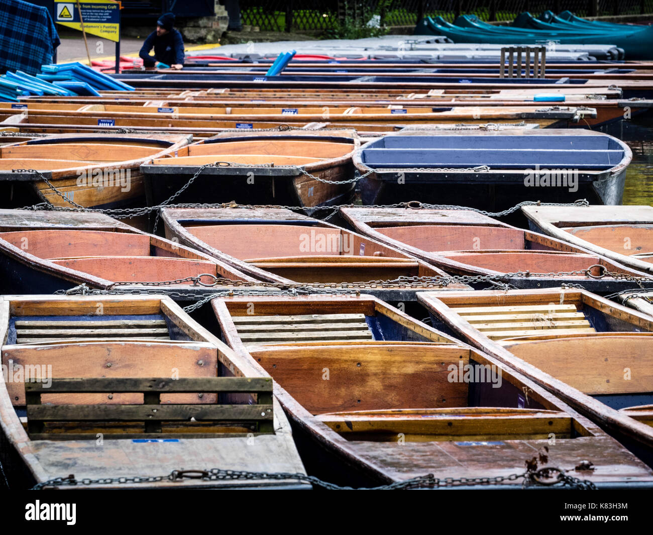 Cambridge Tourism - punts on the River Cam tied up while waiting for tourists to hire them - Stock Image