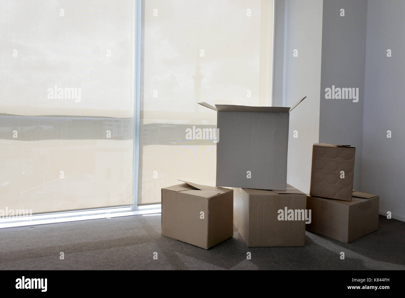 Moving boxes in empty apartment in Auckland city, New Zealand. Buy, sale, real estate, insurance, mortgage, bank Stock Photo