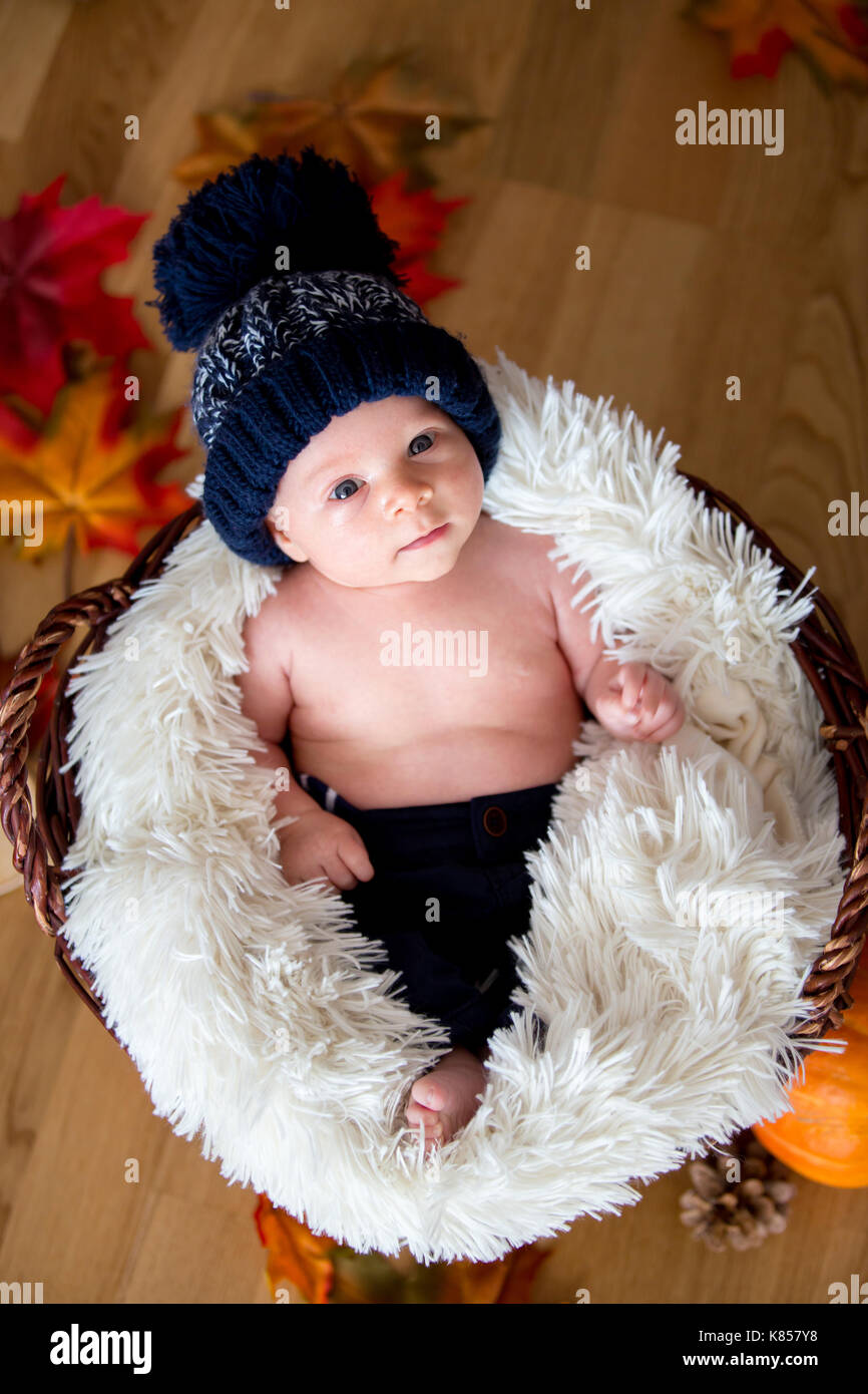 4eb52533394 Cute newborn baby boy with blue knitted hat in a basket