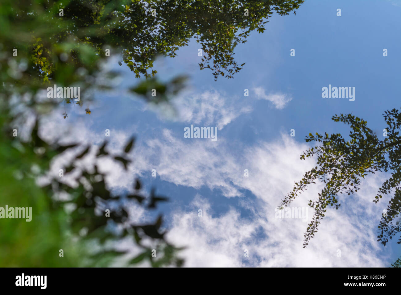 Trees and blue sky reflecting in still water on an Autumn day in the UK. - Stock Image