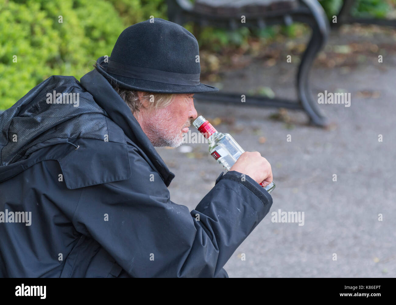 Man outside drinking in the daytime, appearing to be homeless, in the South of England, UK. Man drowning his sorrows. Stock Photo