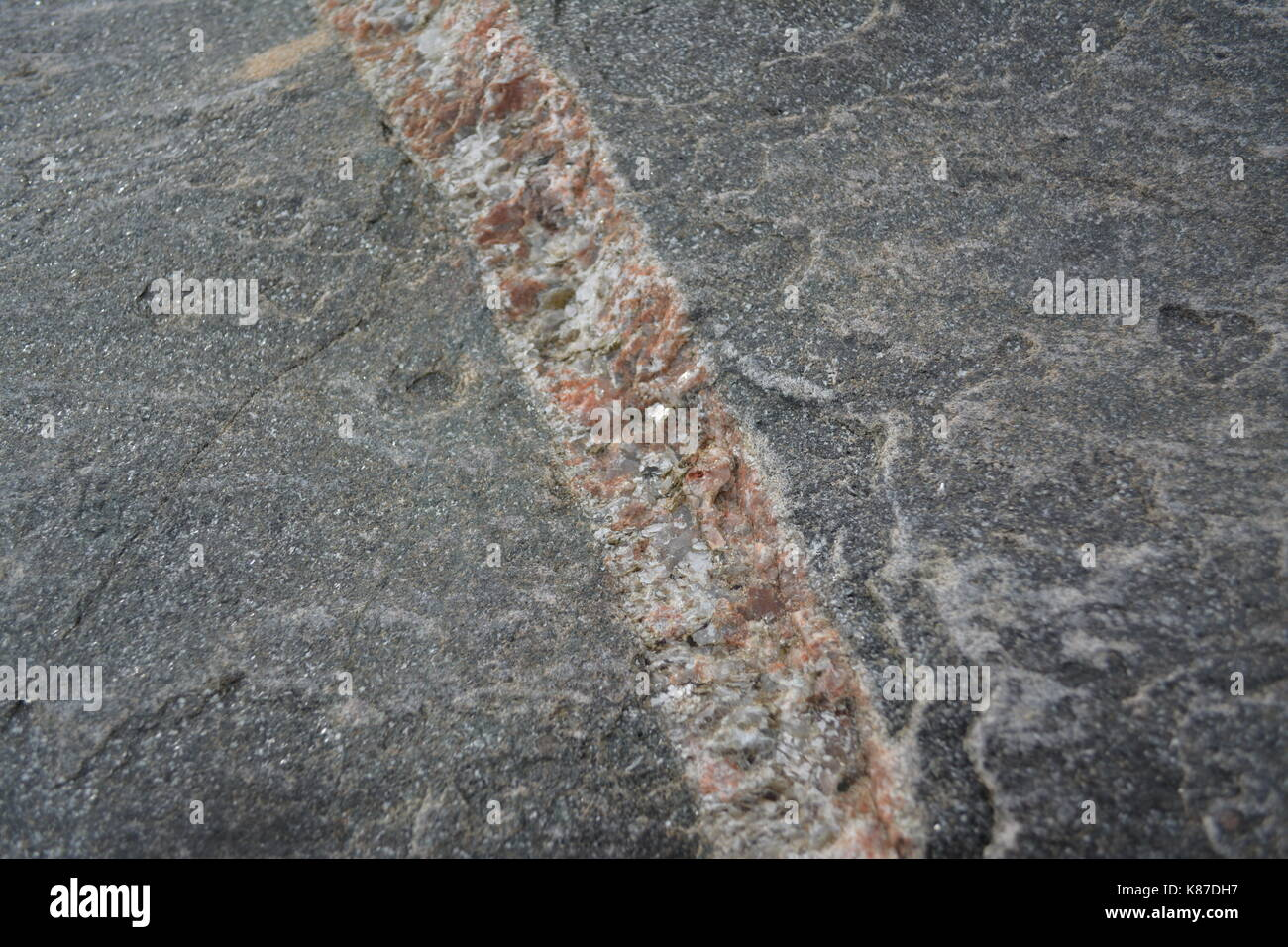 close up of large rock boulder stone showing igneous intrusion on beach at Rossmarkie Scotland England UK - Stock Image
