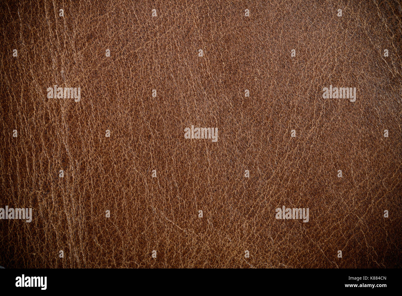 brown leather texture or background for design - Stock Image