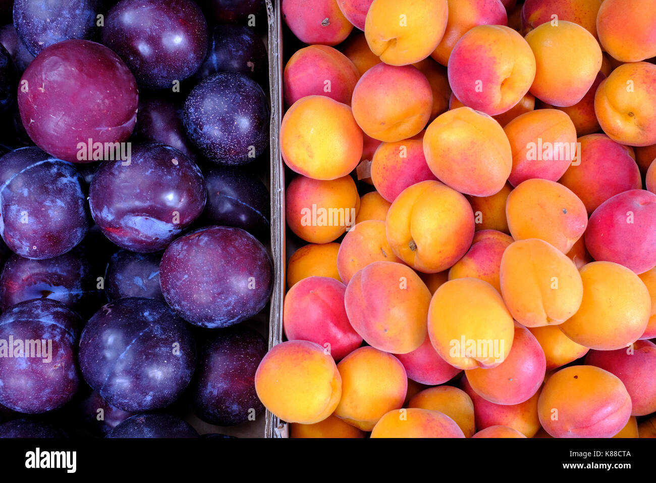 Fresh Fruit-Plums and apricots - Stock Image