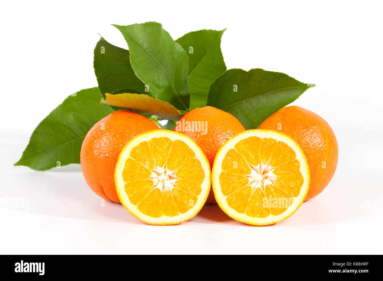 Oranges on white background. - Stock Image