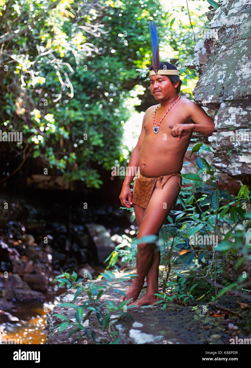 An adult male member of the The Pemon or Pemón (Pemong) tribe, in a rainforest in the Gran Sabana region of - Stock Image