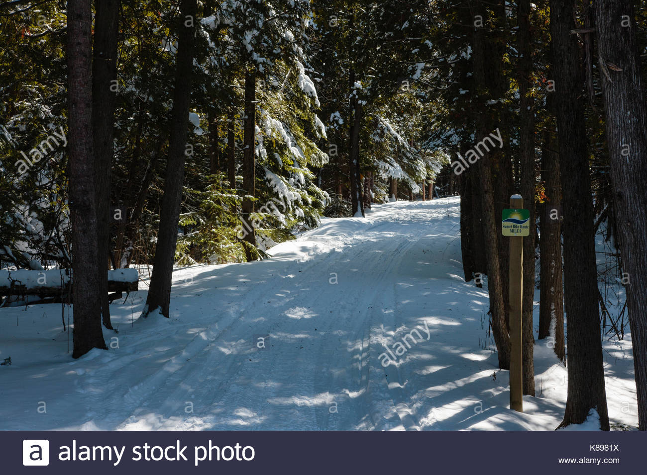 Snowmobile trail through Peninsula State Park, Door County, Wisconsin - Stock Image