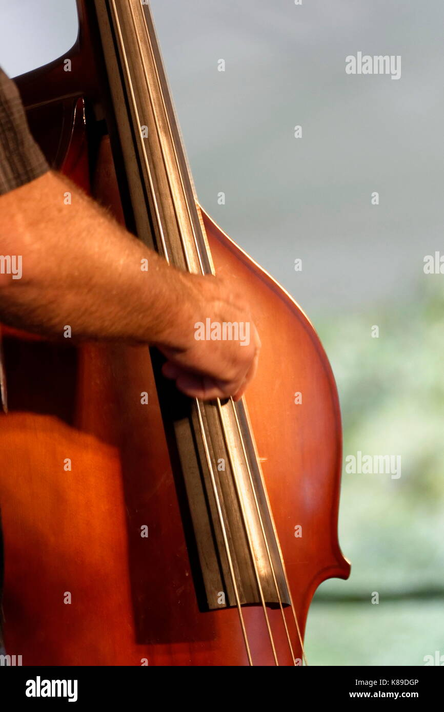 Upright bass player with one hand shown playing the instrument. - Stock Image