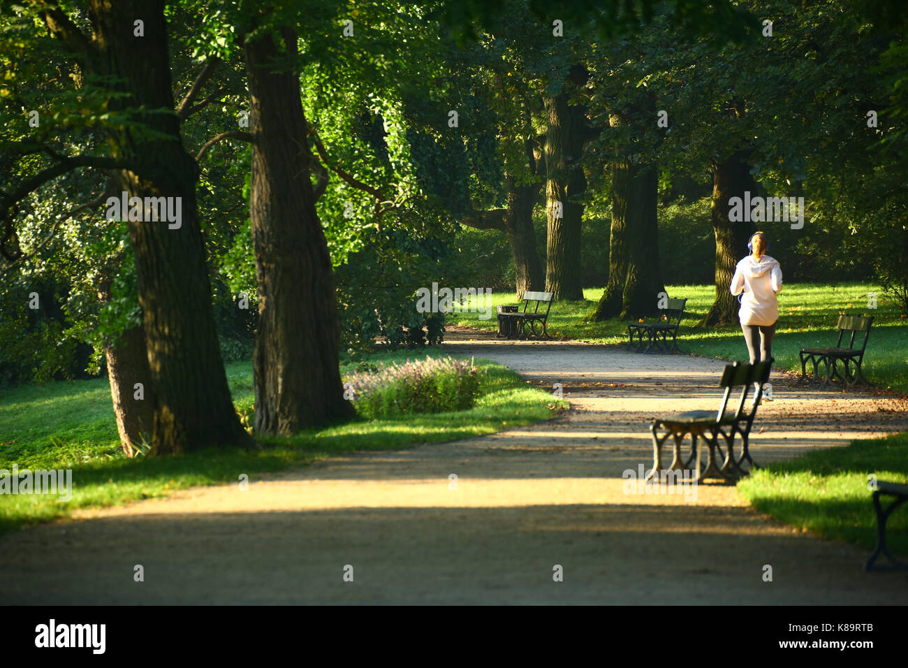 Warsaw, Poland. 19th Sep, 2017. Cold sunny morning at Lazienki Park. Credit: Madeleine Ratz/Alamy Live News - Stock Image