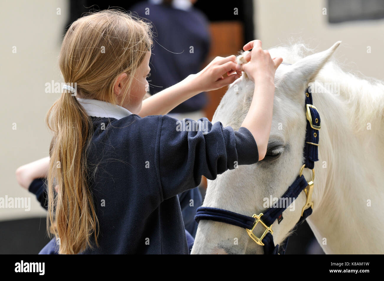 a young girl caring for a horse at a riding school. - Stock Image