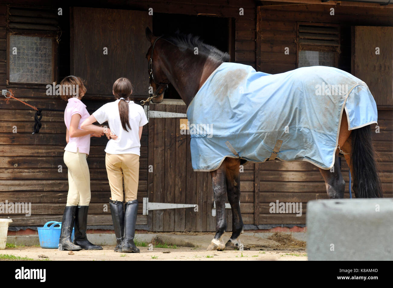 Some young girls or horse riders at a riding stables standing near horses and socialising and chatting discussing - Stock Image