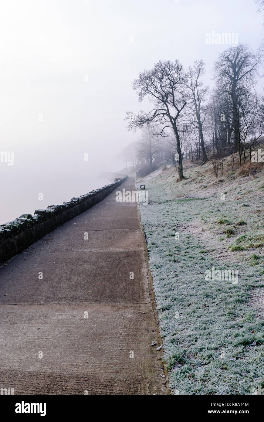 Frosty, foggy coastal path. - Stock Image
