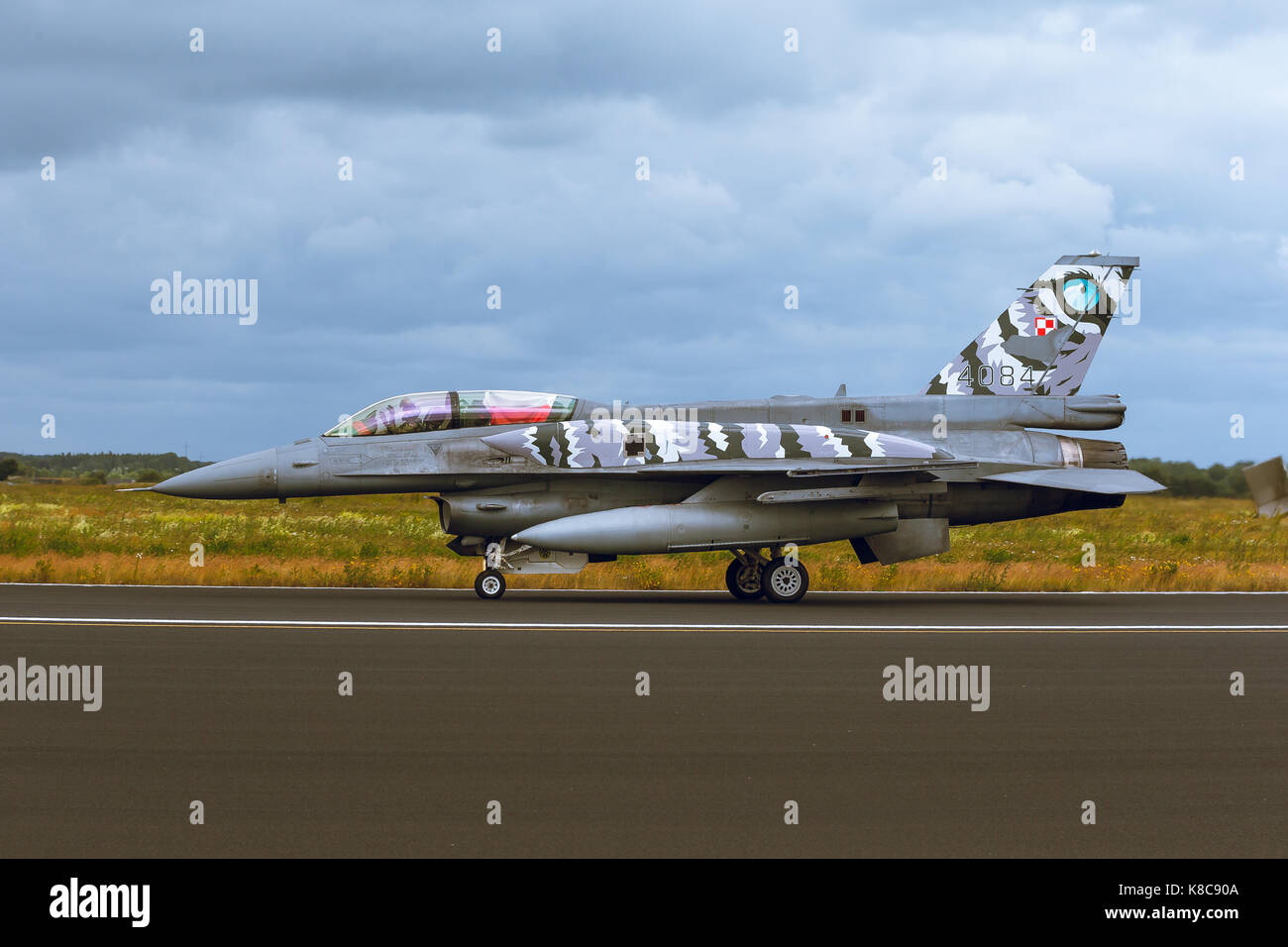 General Dynamics F-16 Fighting Falcon at NATO Tiger Meet M2014 - Stock Image