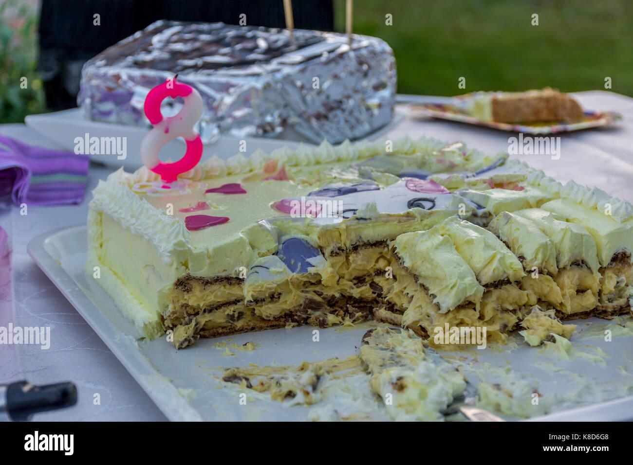 Fantastic Birthday Cake For 8 Year Old Girl Stock Photo 160101096 Alamy Funny Birthday Cards Online Chimdamsfinfo