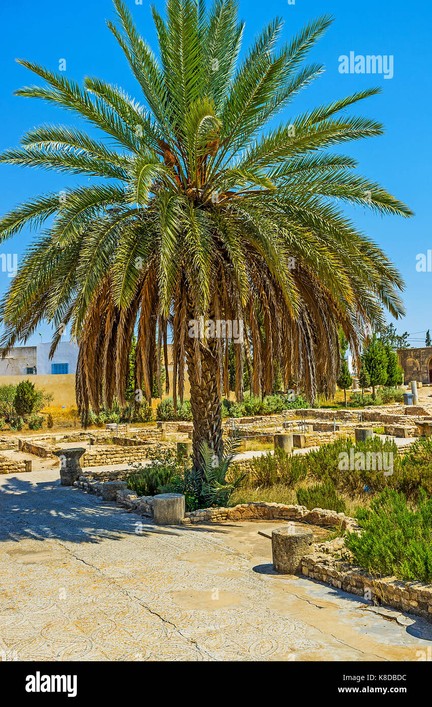 EL DJEM, TUNISIA - SEPTEMBER 1, 2015: The town boasts the interesting archaeological museum with ancient roman mosaics - Stock Image