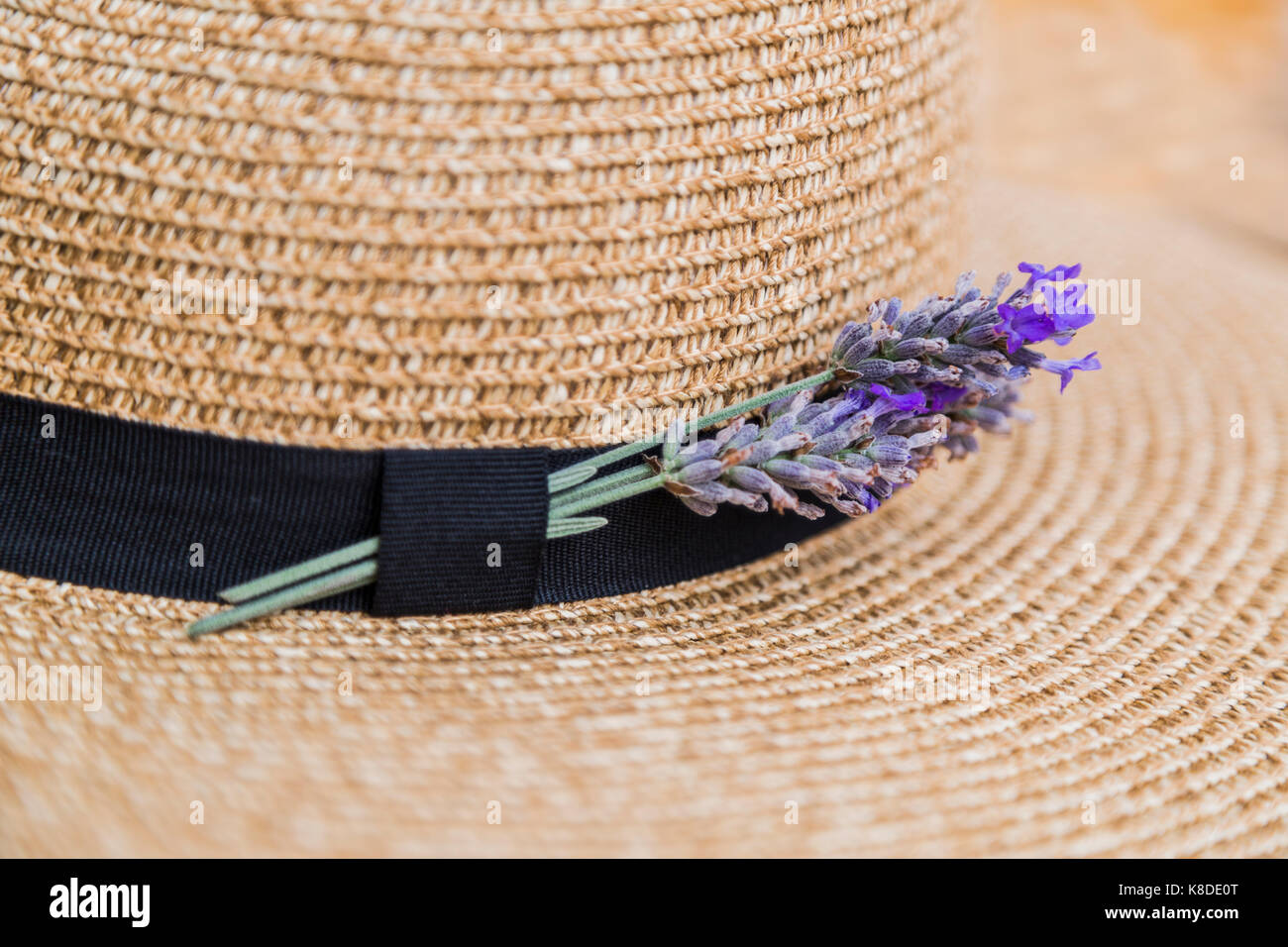 Purple Floral Decorated Hat Stock Photos Purple Floral Decorated