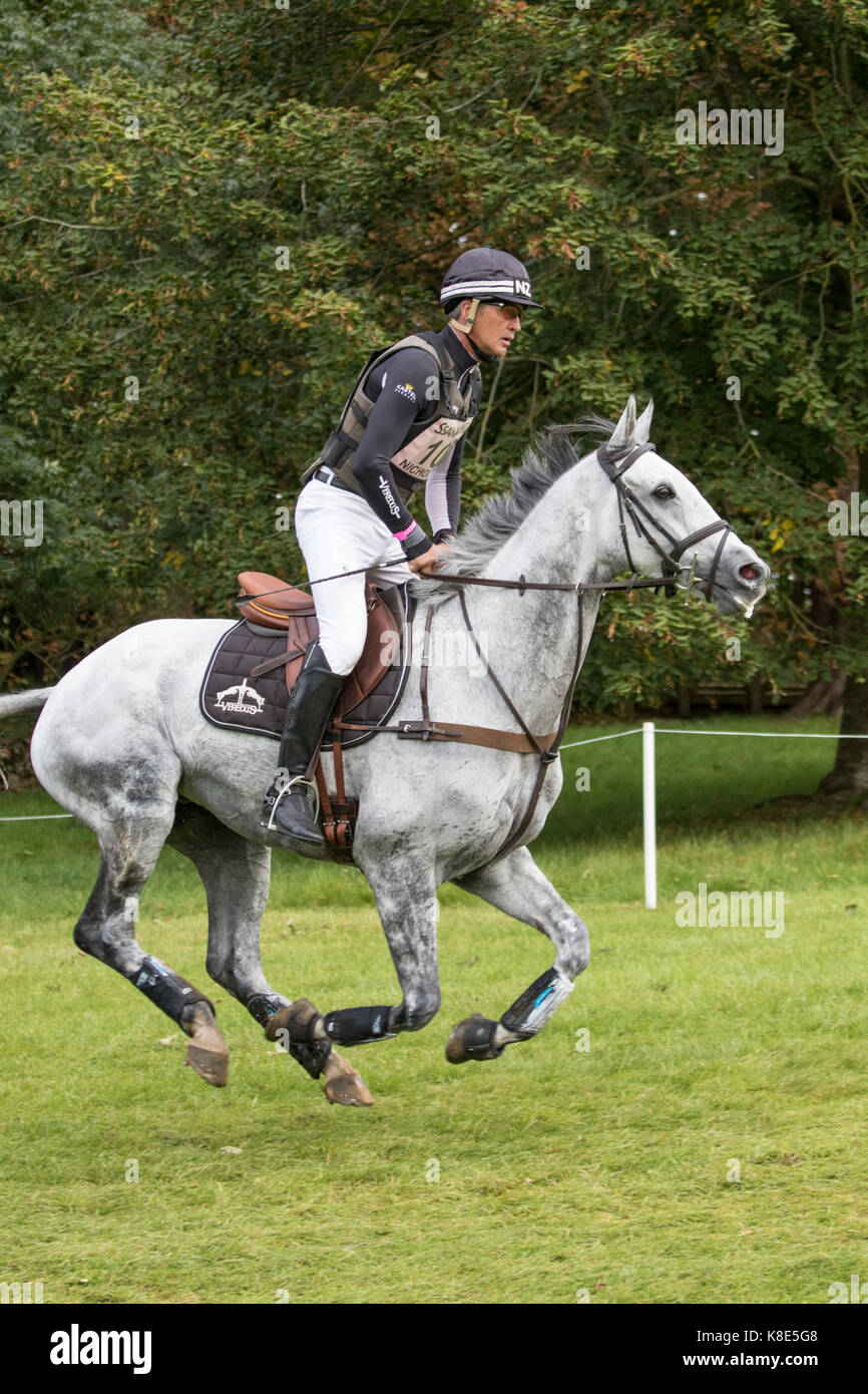 Andrew Nicholson on SWALLOW SPRINGS,  Blenheim Palace International Horse Trials 16th September 2017 - Stock Image