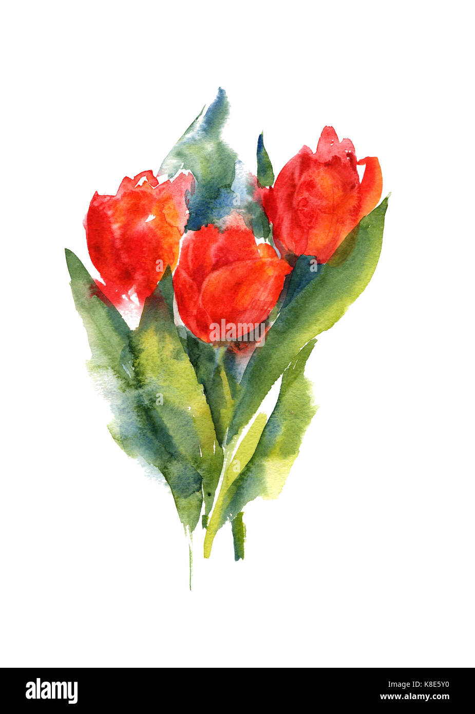 Collection watercolor hand drawing summer iris flowers bouquet - Stock Image