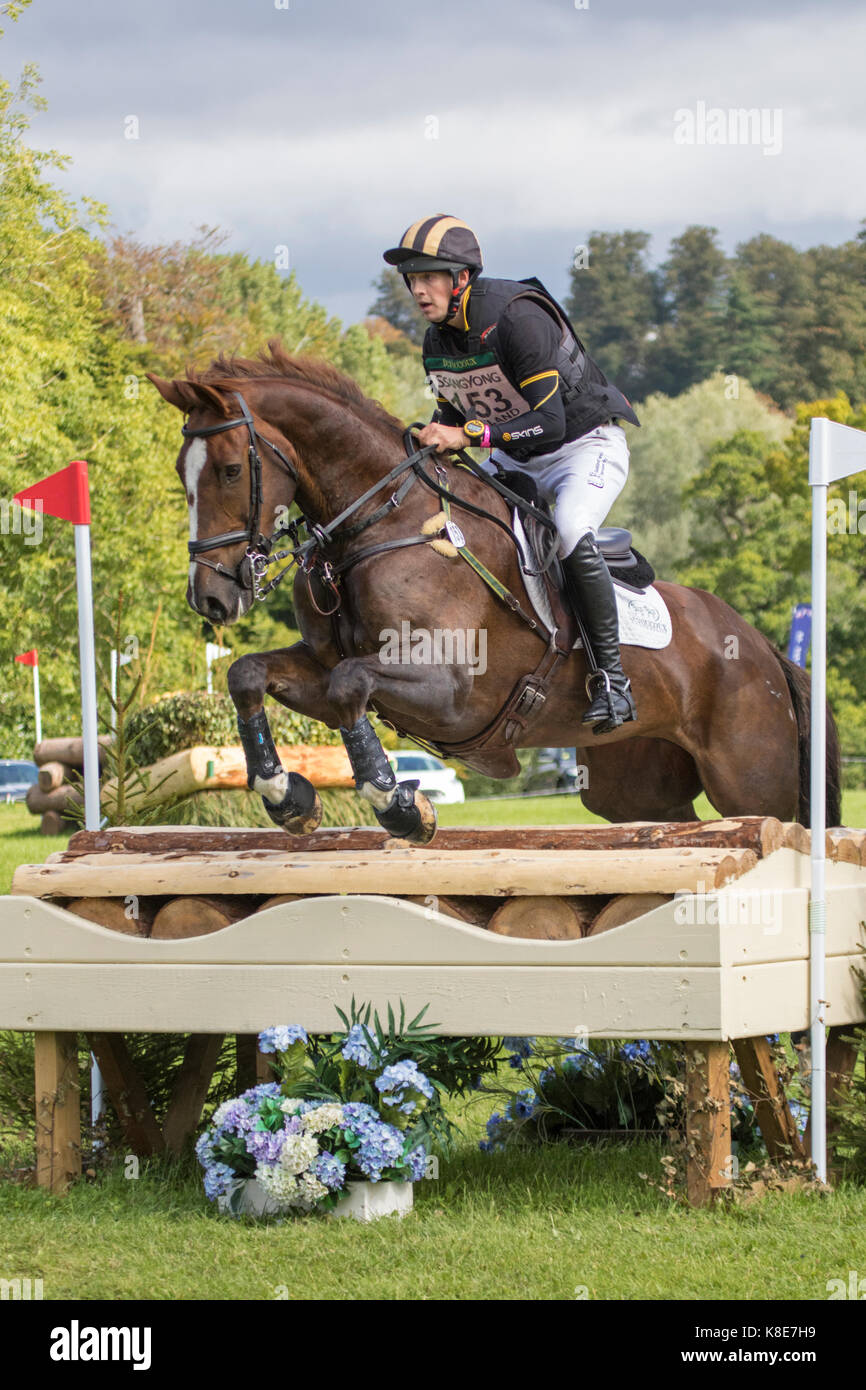 Tom Rowland on Possible Mission, Blenheim Palace International Horse Trials 16th September 2017 - Stock Image