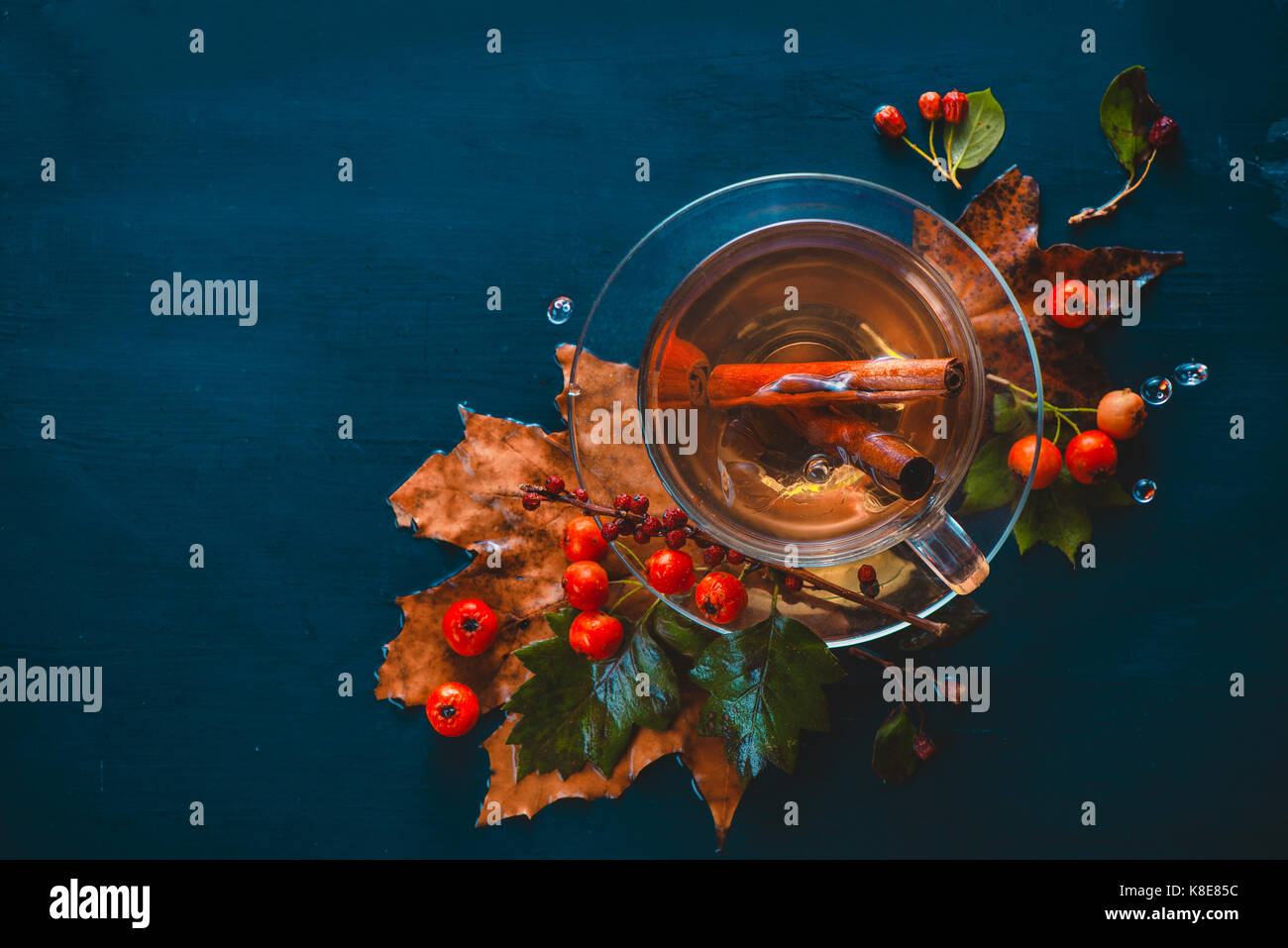 Dark autumn still life with tea cup, leaves, berries and cinnamon on a wet background. Tea cup from above. - Stock Image