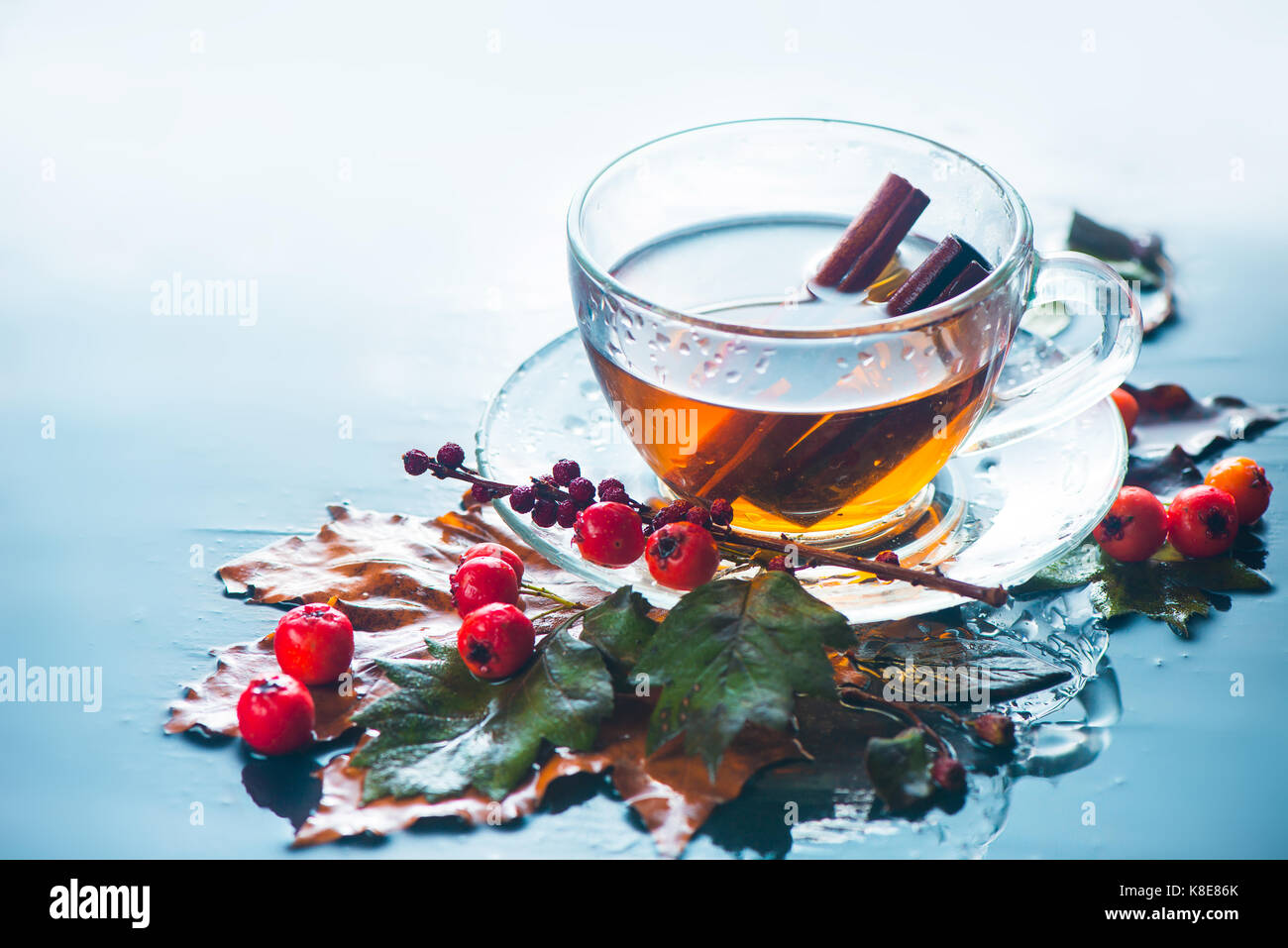 Glass tea cup in autumn still life with rain, leaves, berries on a wet background - Stock Image