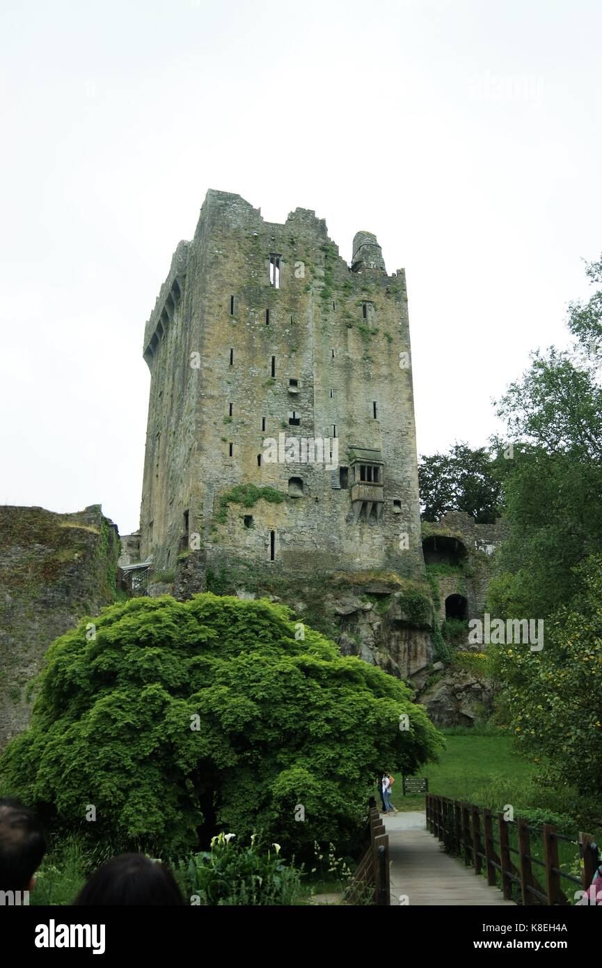 Blarney Castle, Ireland - Stock Image