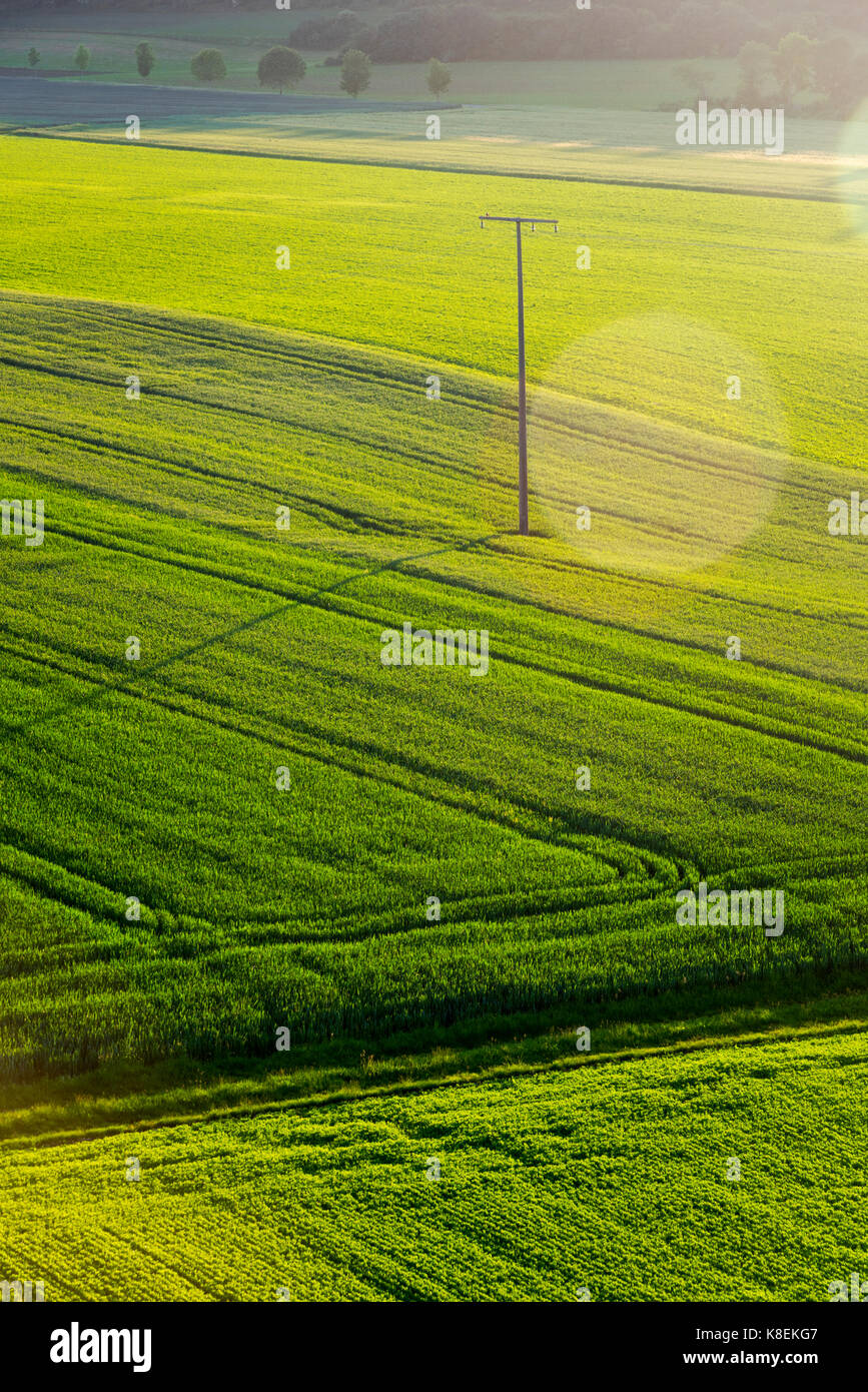 Green Agricultural fields , late afternoon , High angle view - Stock Image