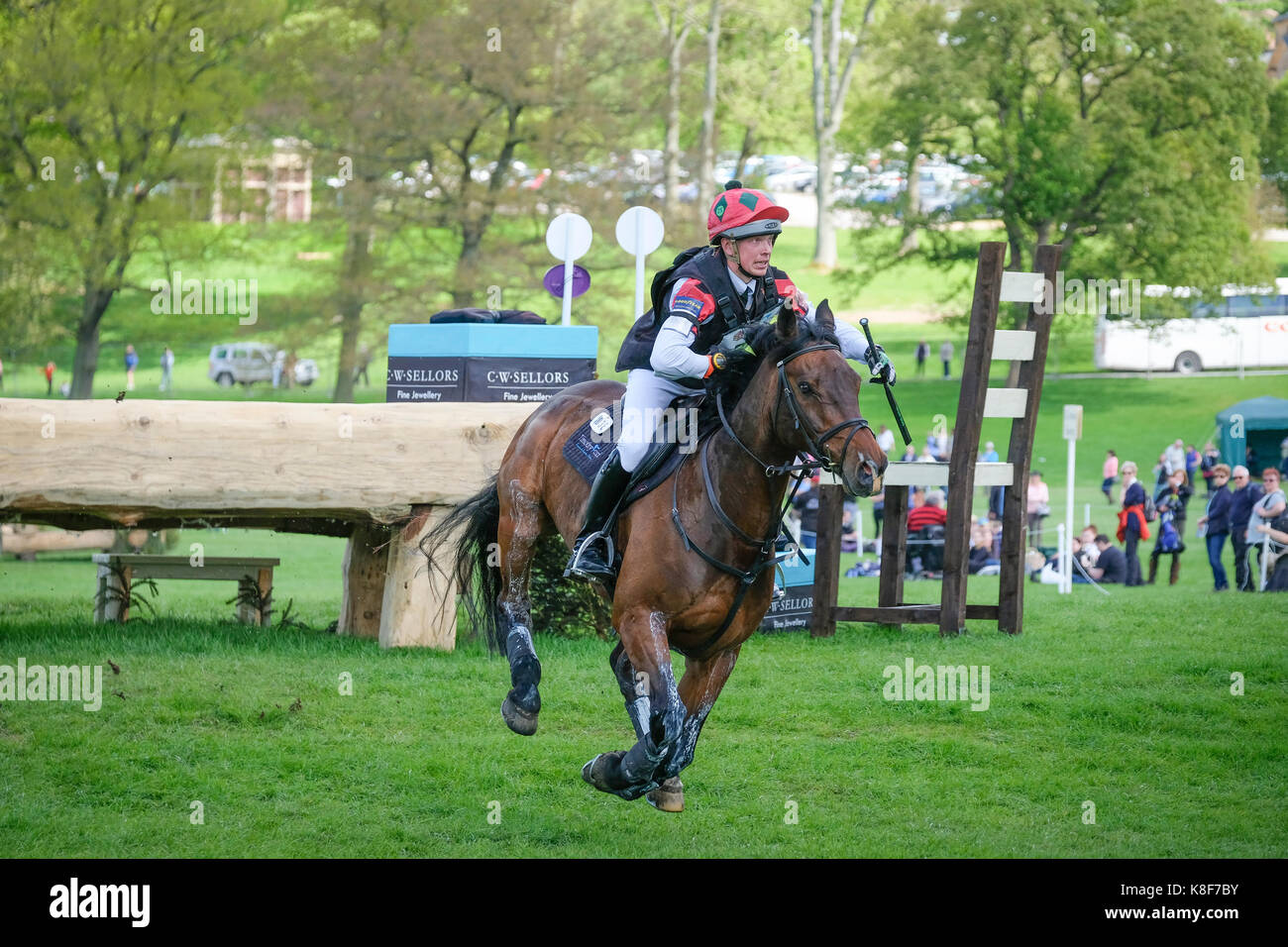 Rider and horse on the cross country course at Chatsworth International Horse Trials - Stock Image
