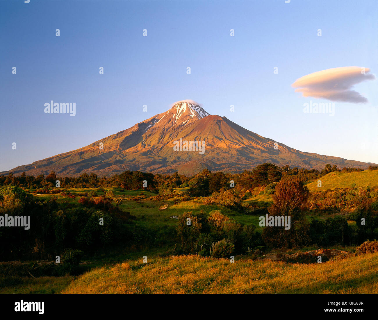New Zealand. North Island. Mount Taranaki. - Stock Image
