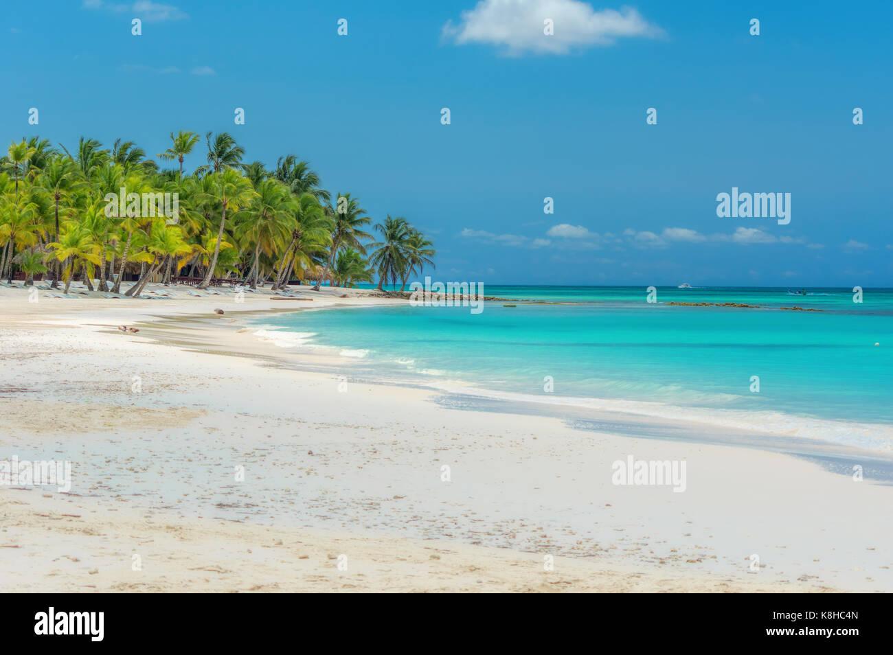 Beach on the Caribbean island of Saona in Dominican Republic. Stock Photo