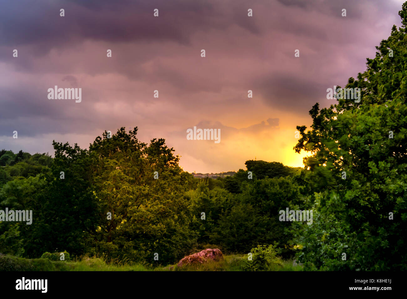 Sun behind trees in Anston Stones, Anston - Stock Image