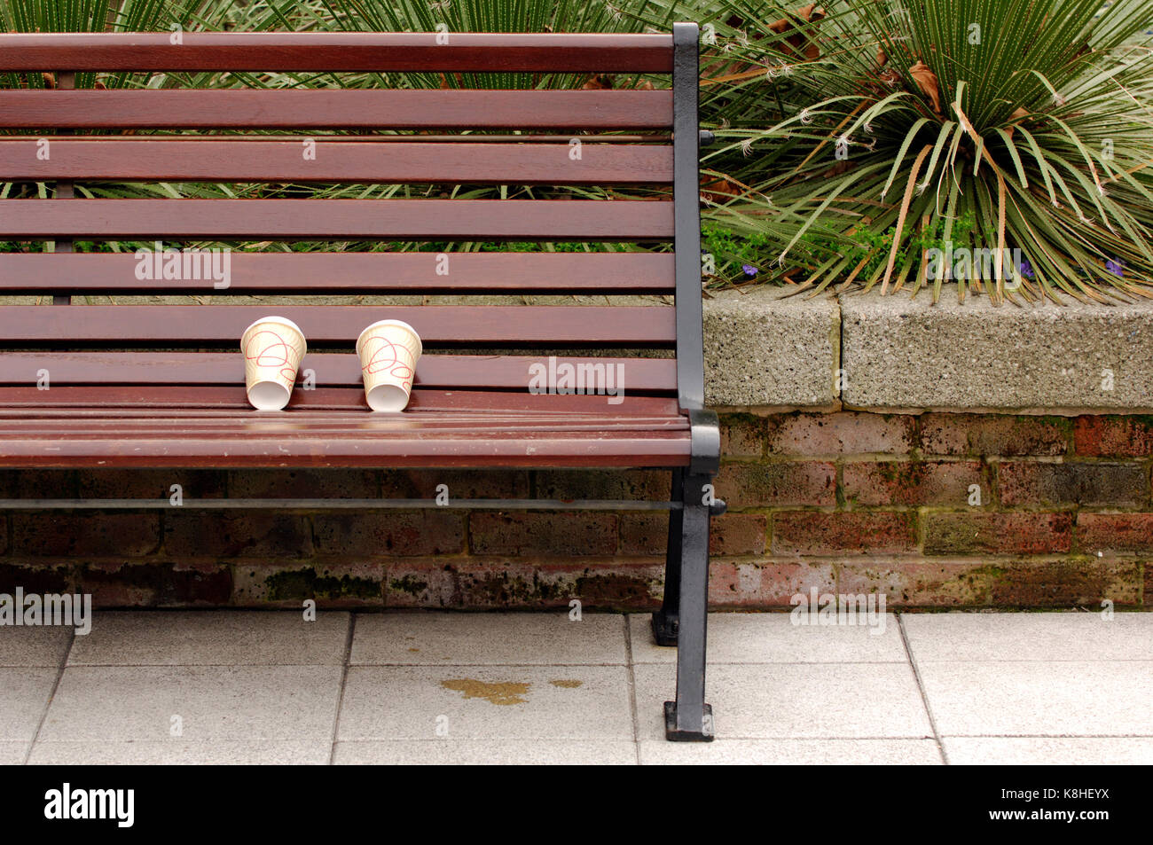 tow empty paper coffee cups left on a wooden bench by litter bugs. Lazy people not throwing litter and rubbish away - Stock Image