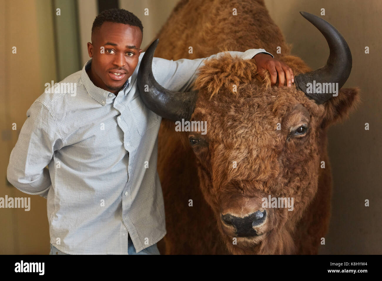 African student with breeding bull as agronomy asignment - Stock Image